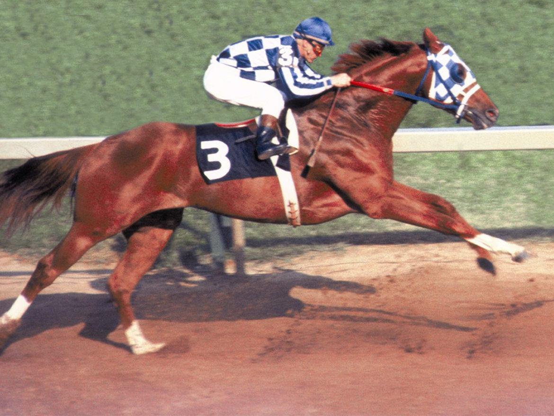 Why Secretariat Ran The Greatest Race Ever