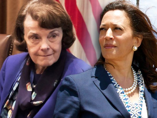 Kamala Harris Dianne Feinstein ICE Acting Director Blasts Dems for Cancelling Meetings, Saying 'They Don't Want to Know the Facts'