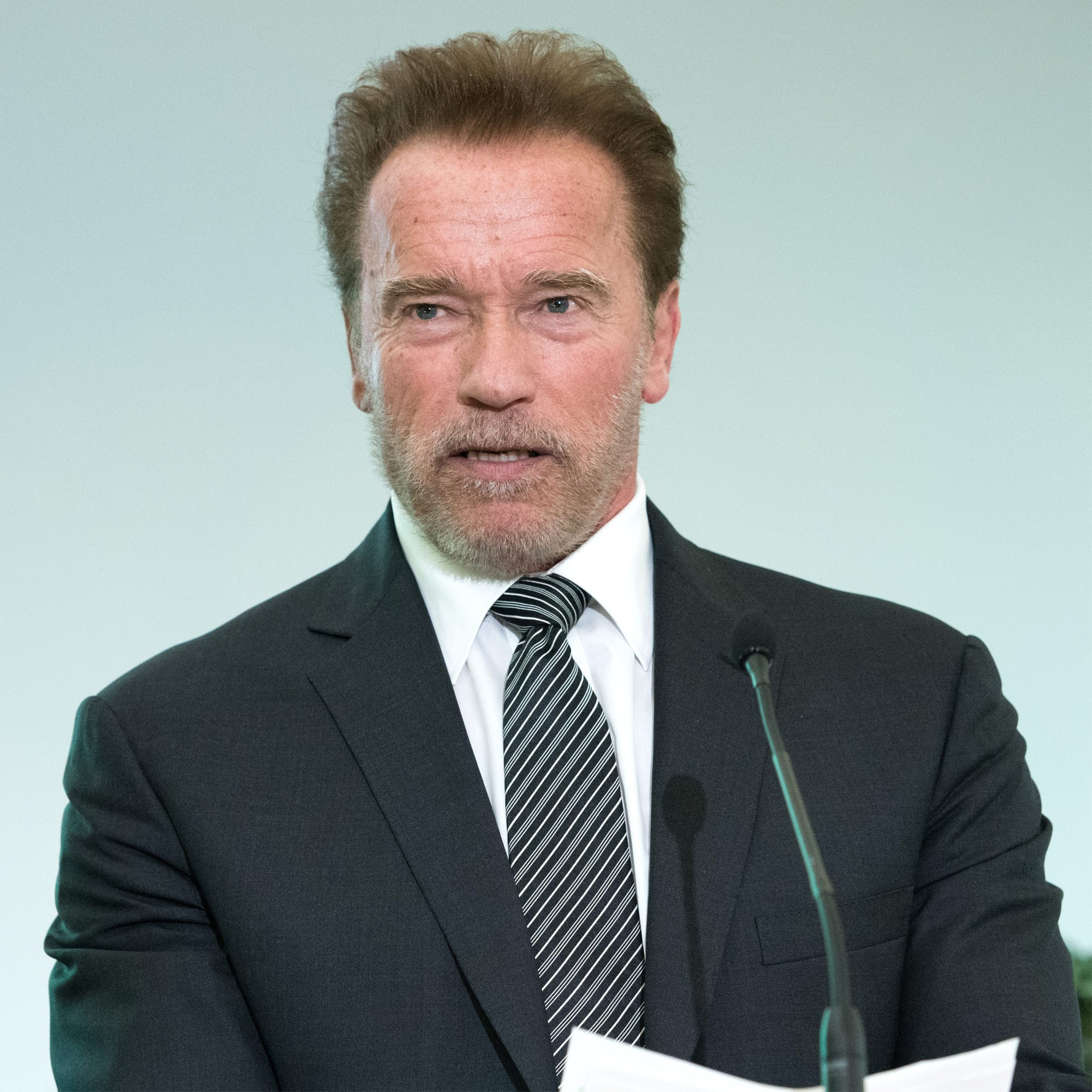 Arnold Schwarzenegger calls for stimulus funds to be used to 'remake societies'