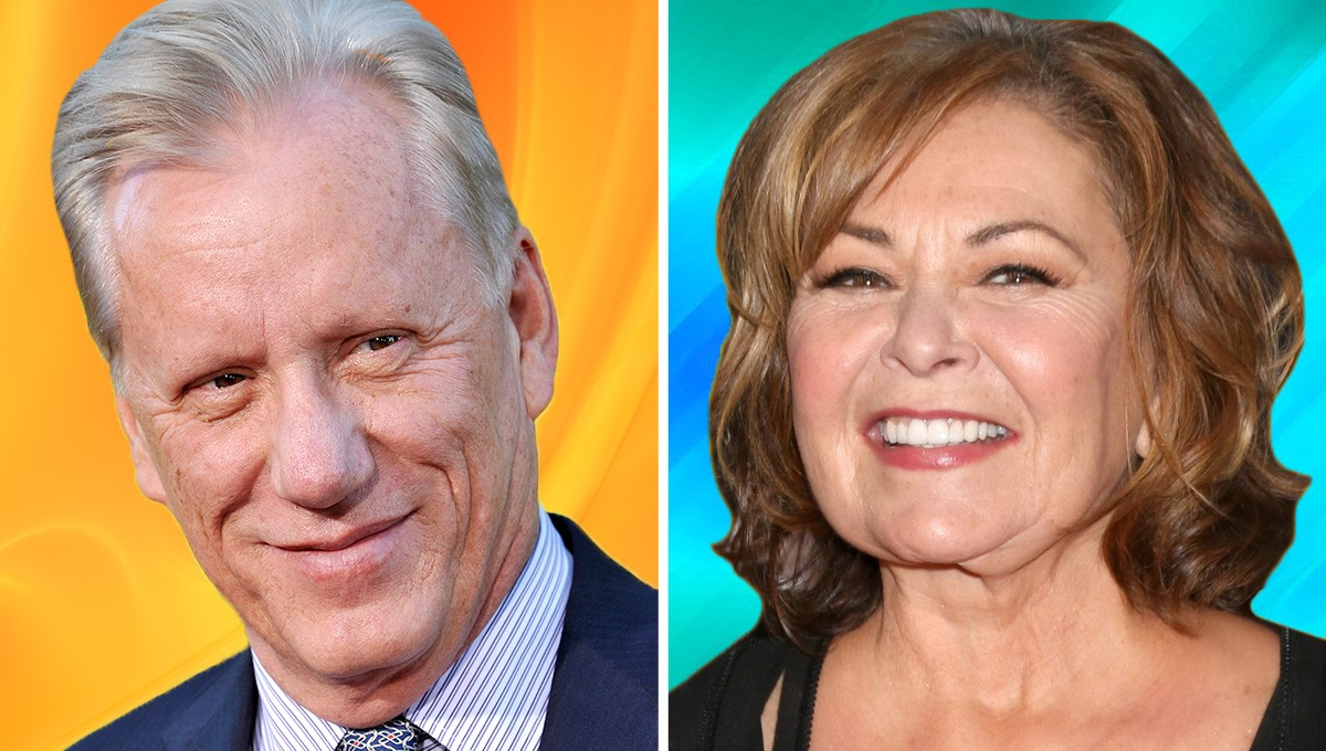 James Woods Says He Would Do a Sitcom with Roseanne Barr