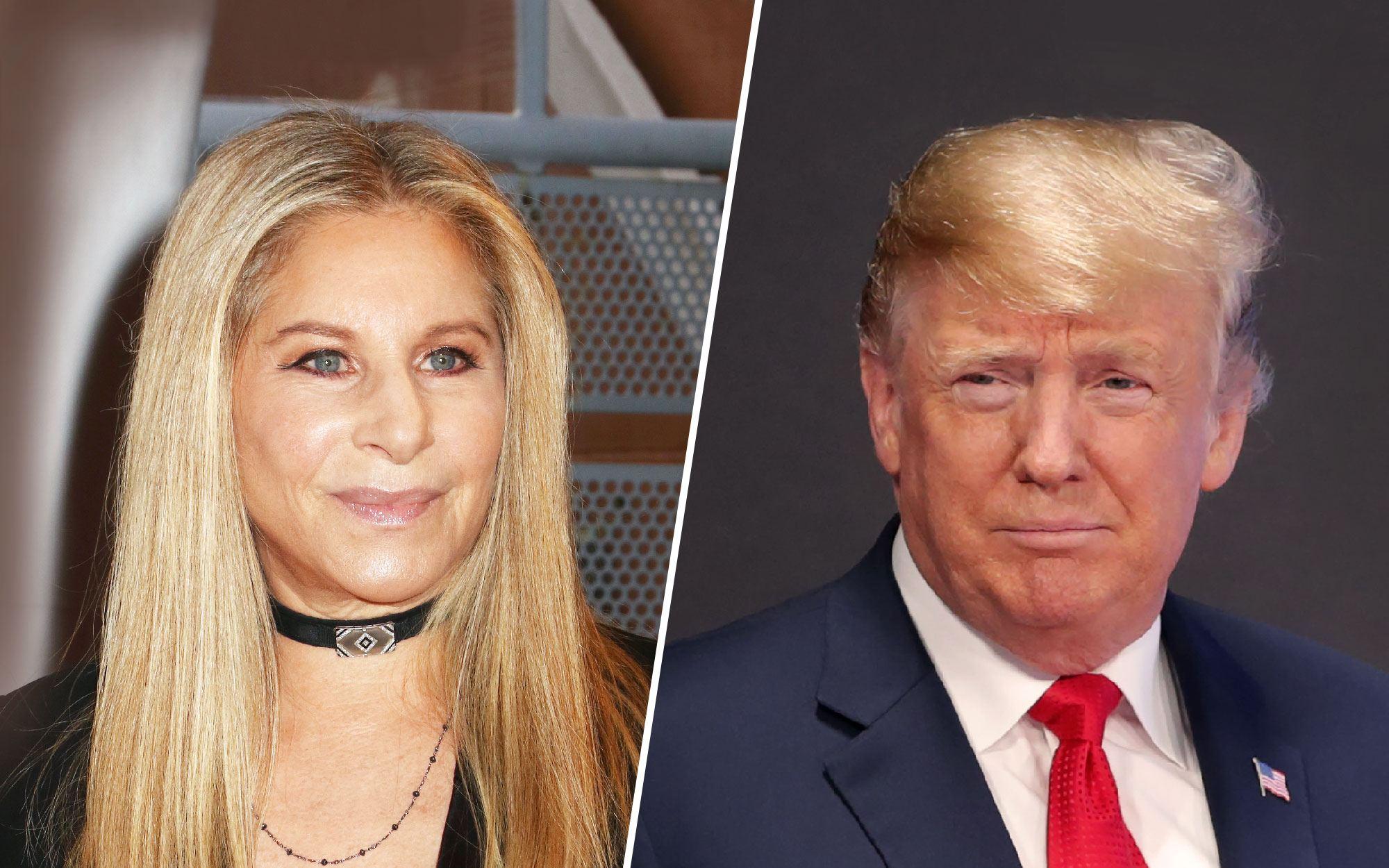 Barbra Streisand Declares Donald Trump Has 'No Regard' for America's Environment