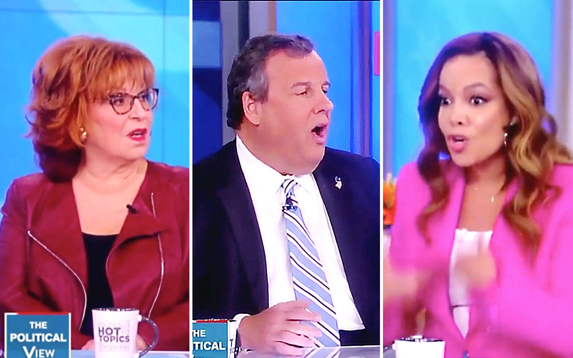 'The View' Co-Hosts Confront Christie Over His Trump ...