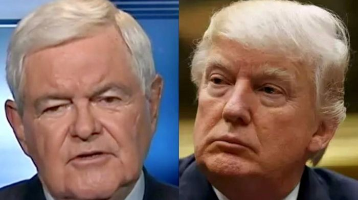 Newt Gingrich Stands By Trump - Says 2020 Election Could Be 'Biggest Presidential Theft' Since 1824