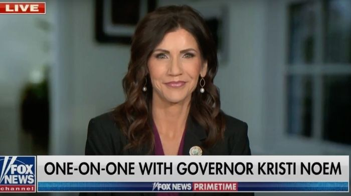 SD Gov. Kristi Noem Said Americans Want A Republican Party 'That Actually Follows Through On What They Say They're Going To Do'